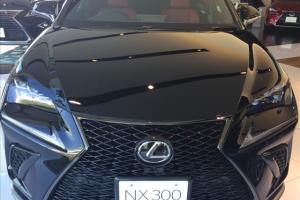レクサスnx,マイナーチェンジ,評判,NX300の前方からの写真
