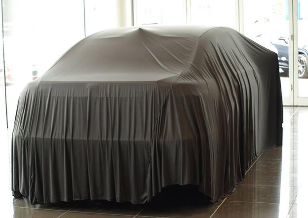 LS600hLの世界に一台だけの特別車に幕がかかった画像